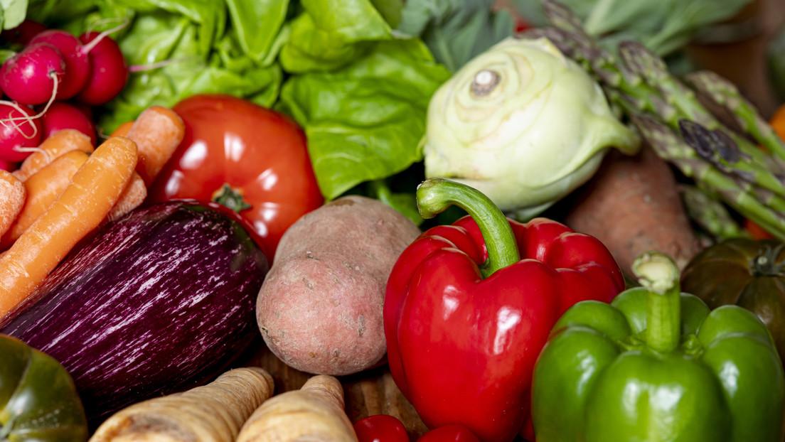 WWF schlägt Alarm:  40 Prozent der Lebensmittel werden nie gegessen