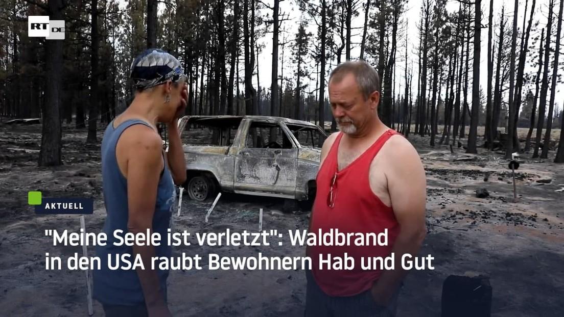 """""""Wie ein Stich ins Herz"""": Waldbrand in den USA zerstört Existenzen"""