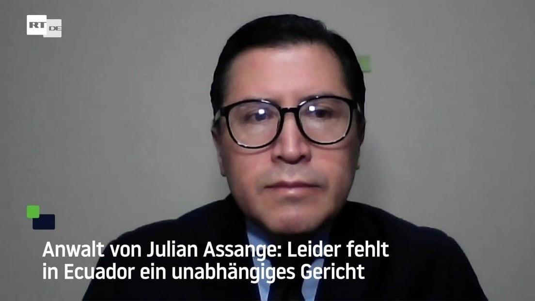 Anwalt von Julian Assange: Leider fehlt in Ecuador ein unabhängiges Gericht