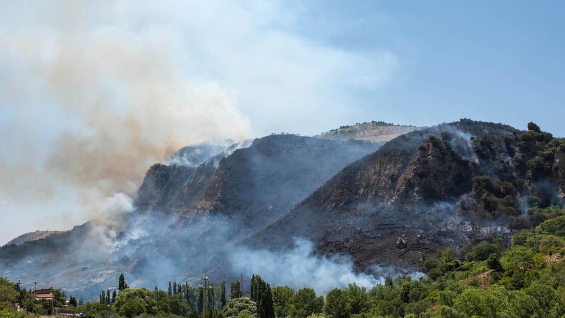 Schwere Waldbrände in Italien und der Türkei – fünf Todesopfer, Touristen werden evakuiert