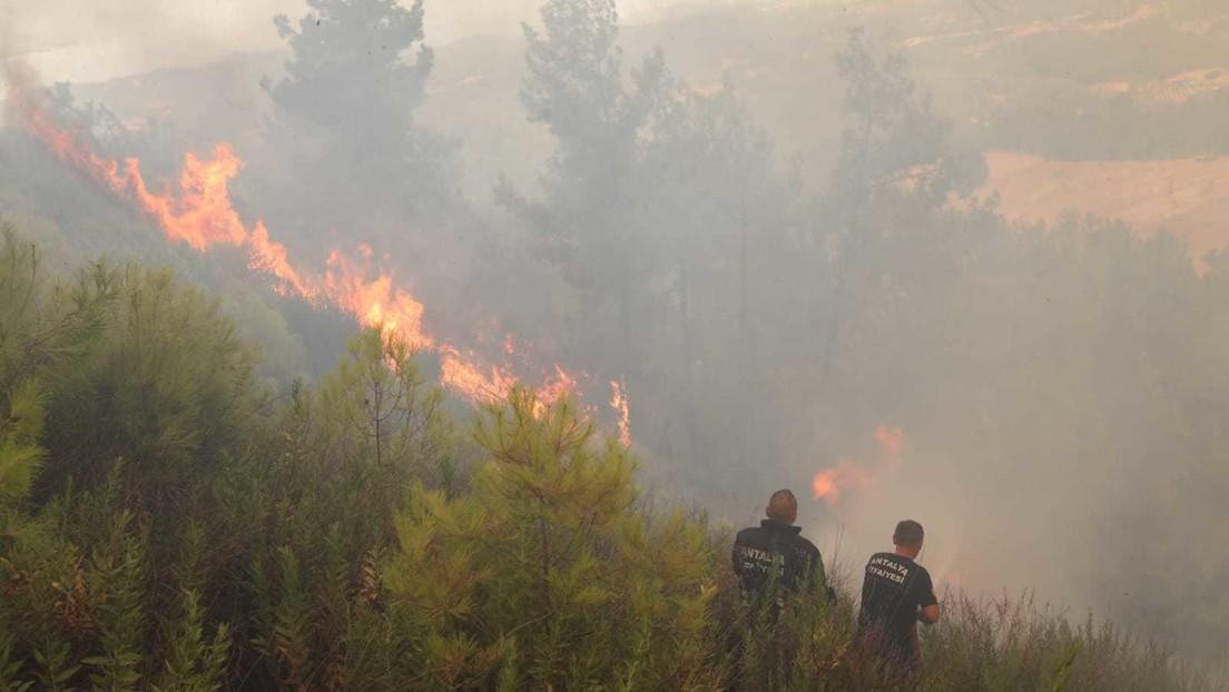 Militante kurdische Gruppe übernimmt Verantwortung für Waldbrände in der Türkei