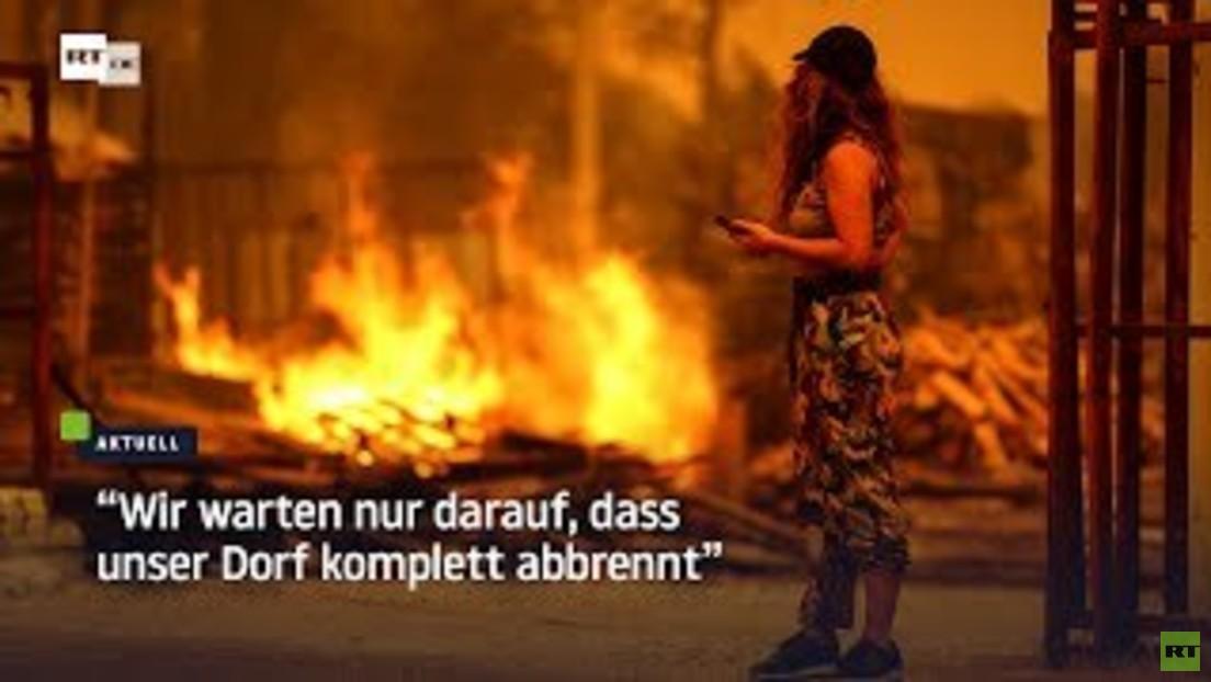 Tausende wegen Waldbränden in der Türkei evakuiert