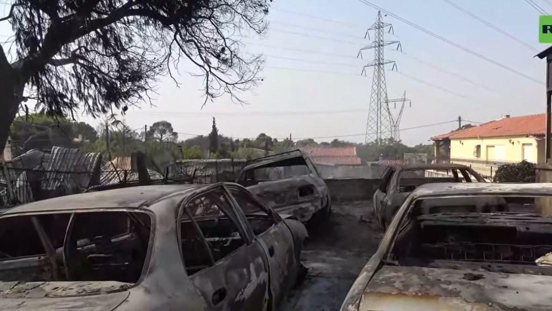 LIVE aus Griechenland: Waldbrände wüten in Vororten von Athen