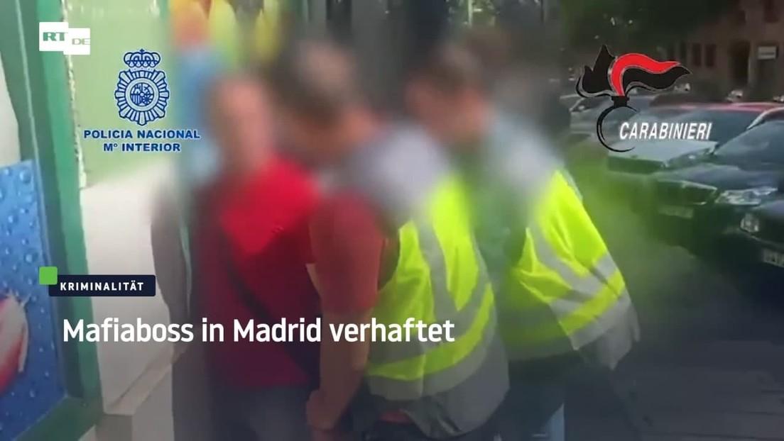 """Der """"Boss der Bosse"""" in Madrid verhaftet: 'Ndrangheta-Chef muss Haftstrafe antreten"""