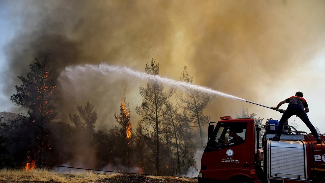 Türkische Wälder in Flammen: Werden Brände als Hebel gegen türkische Regierung benutzt?