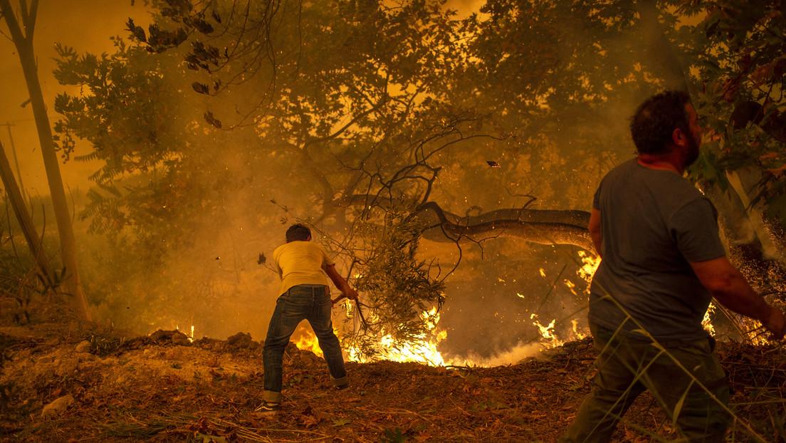 LIVE: Kampf gegen massive Waldbrände in Griechenland geht weiter