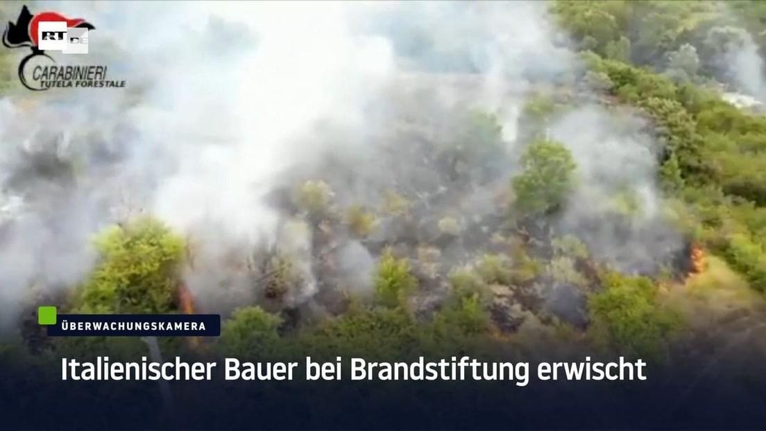 Bauer legt Waldbrand – Festnahme in Italien
