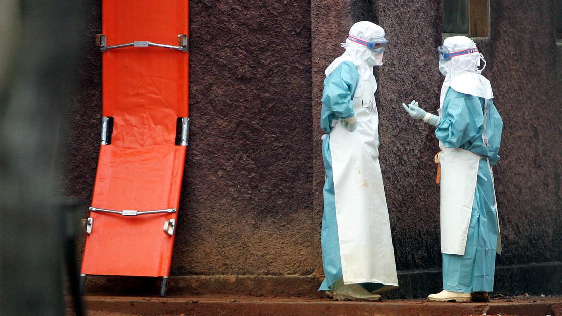 Marburg-Fieber in Guinea: WHO schickt Experten ins westafrikanische Land