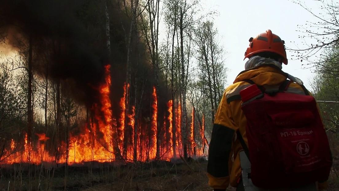 Anhaltende Waldbrände in Jakutien - Qualm erreicht Nordpol und Gebiete im Ural