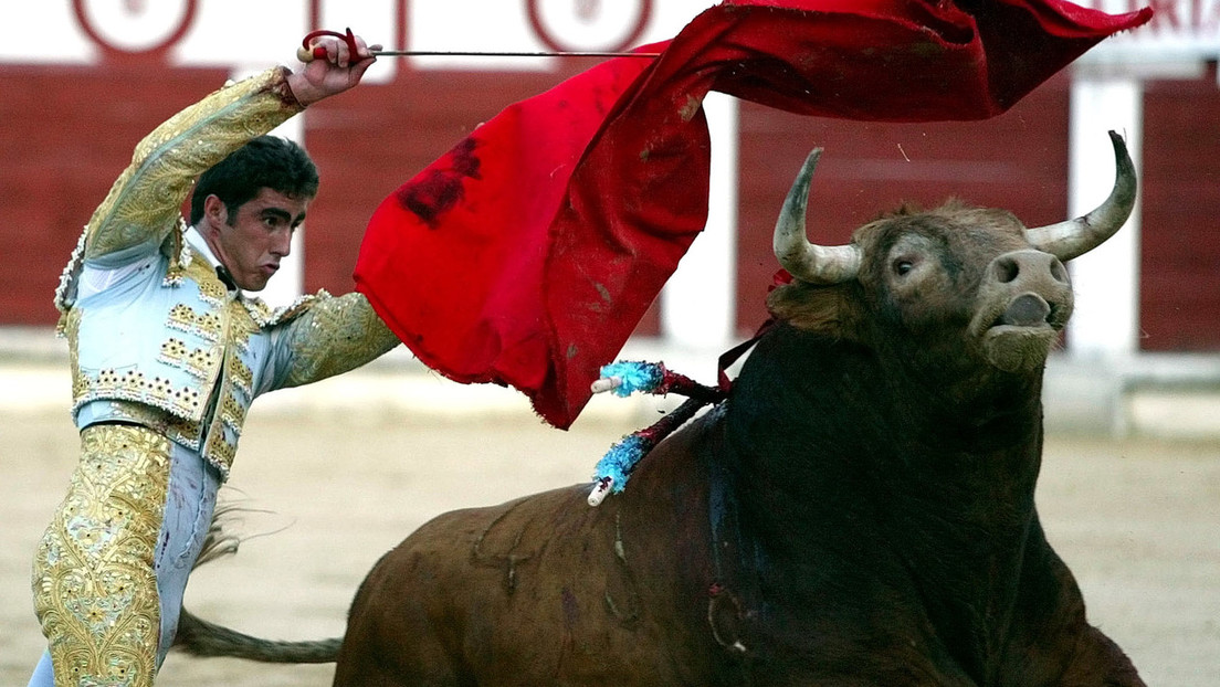 """""""Feminist"""" und """"Nigerianer"""": Spanische Stadt untersagt Stierkämpfe wegen Bullennamen"""