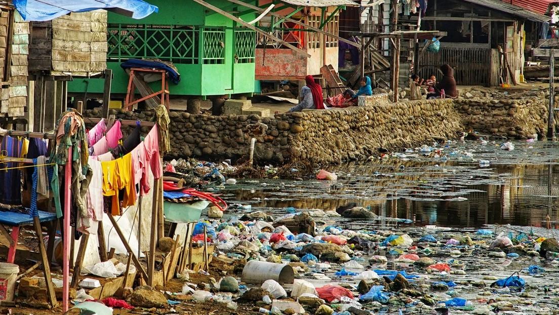 Plastikverschmutzung der Meere trifft alle Bewohner der Erde