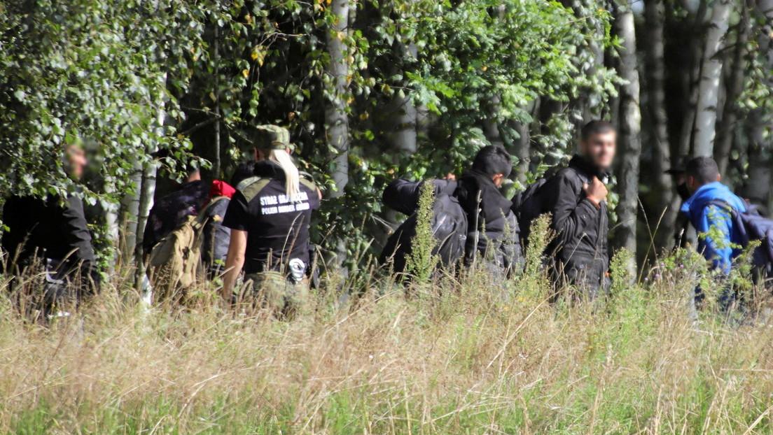 Flüchtlingskrise: Polen schließt Grenze zu Weißrussland mit 2,50 Meter hohen Zaun