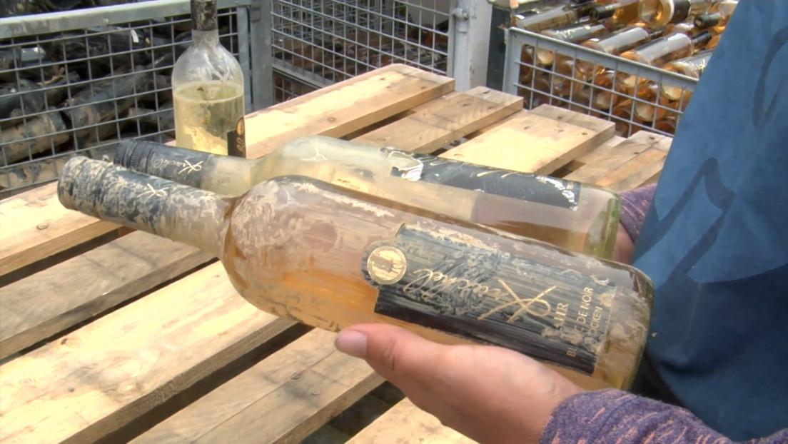 Ahrweiler Winzer kämpfen nach Hochwasserkatastrophe um ihre Existenz