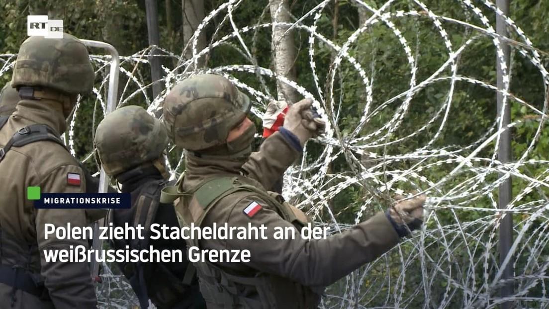 Polen zieht Stacheldraht an der weißrussischen Grenze