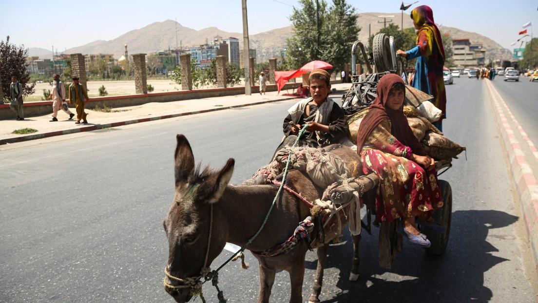 """Russischer Soziologe über die Situation in Kabul nach den Anschlägen: """"Die Stadt hat ein Eigenleben"""""""