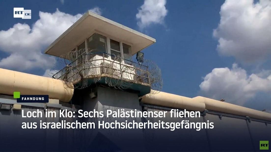 Loch im Klo: Sechs Palästinenser fliehen aus Hochsicherheitsgefängnis in Israel