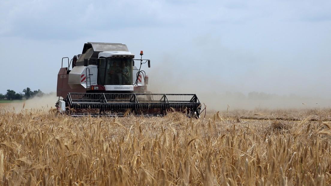 Russland: Krim sucht nach Agrarabsatzmärkten in Afrika