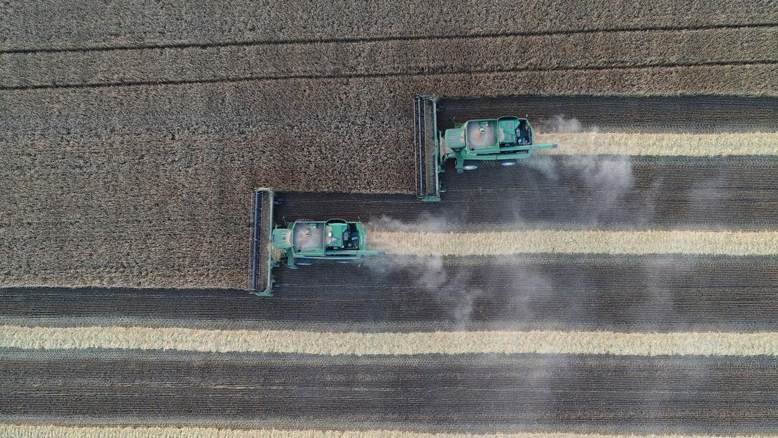 Russische Lebensmittelexporte steigen weiter an – Türkei und EU größte Abnehmer
