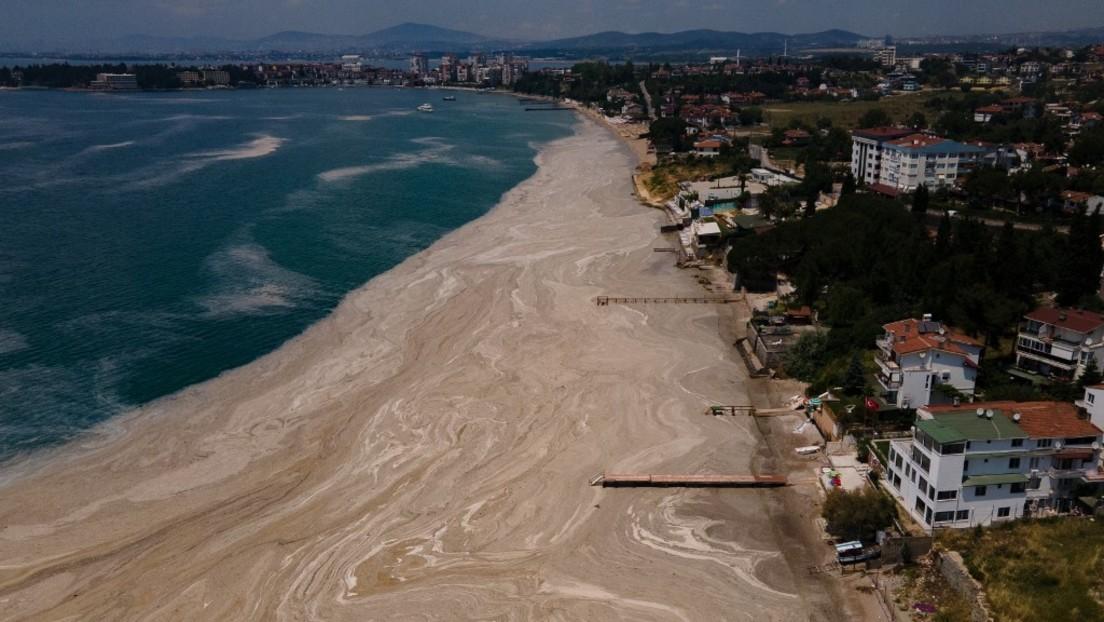 """Wissenschaftler zu Meeresschleim in der Türkei: """"Das Marmarameer ist jetzt ein totes Meer"""""""