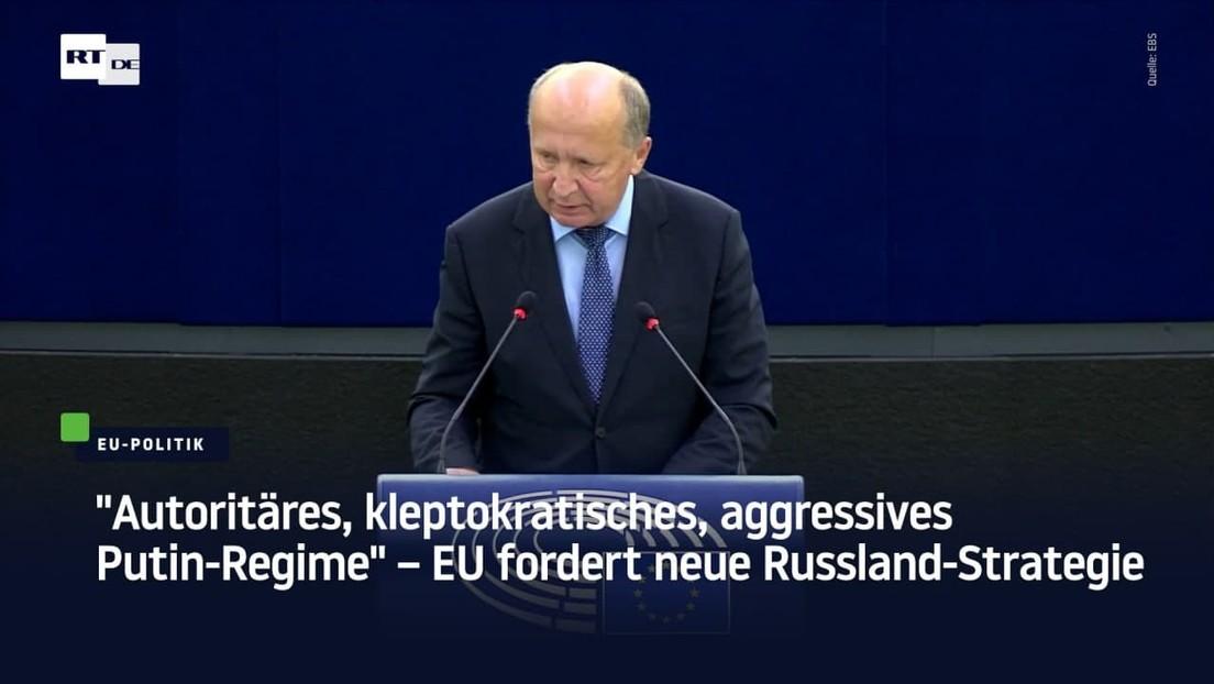 """Autoritäres, kleptokratisches Putin-Regime"" – EU-Parlament fordert neue Russland-Strategie"
