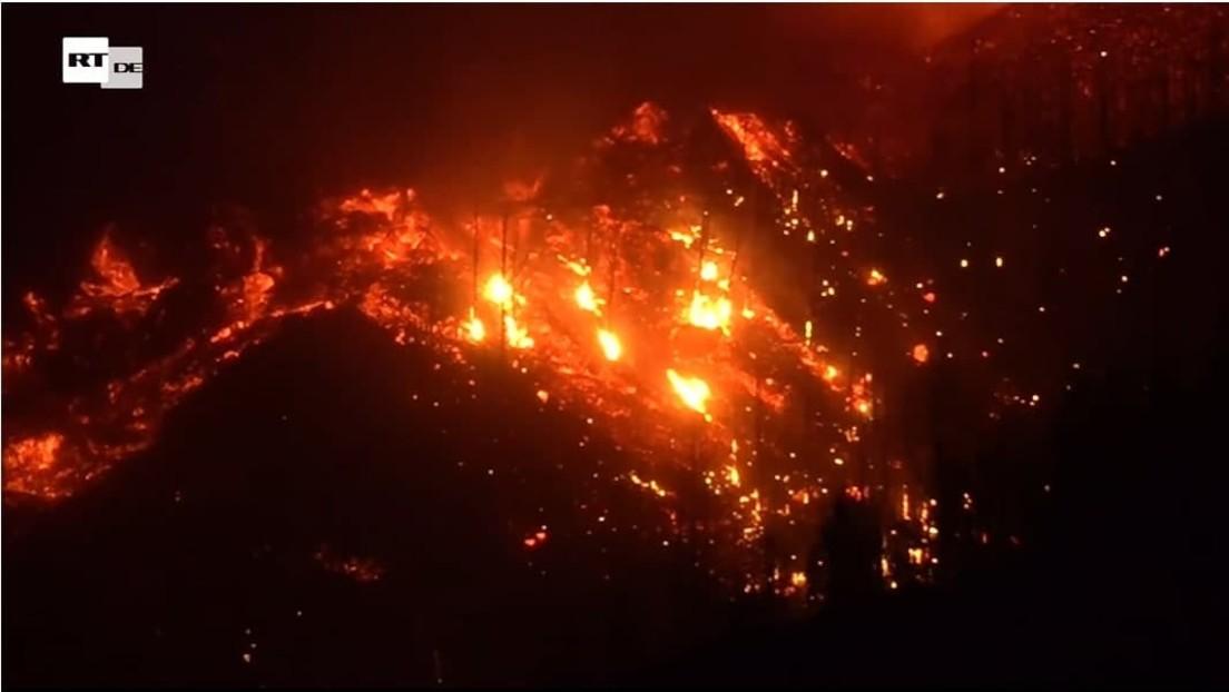 LIVE von den Kanarischen Inseln: Vulkanausbruch auf La Palma