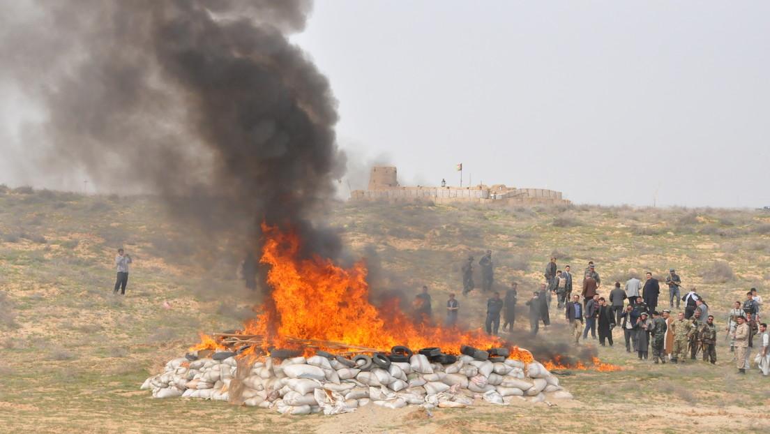 Drogen-Dorado Afghanistan –  In den 20 Jahren NATO-Besatzung erblühte der Mohn wie nie zuvor