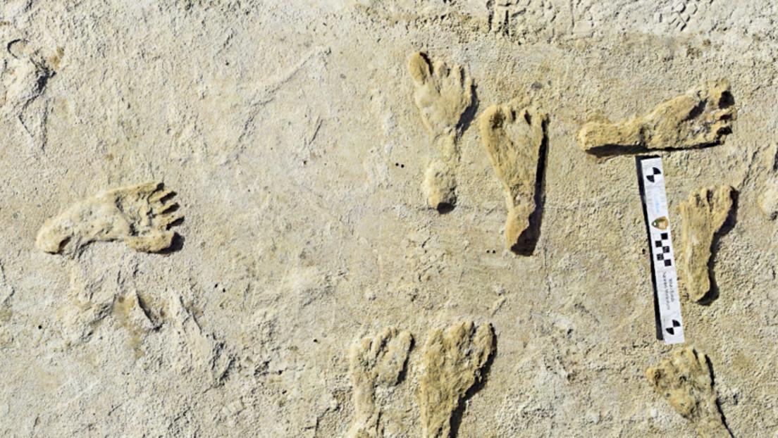 Fossile Fußabdrücke belegen: Nordamerika war schon vor 23.000 Jahren besiedelt