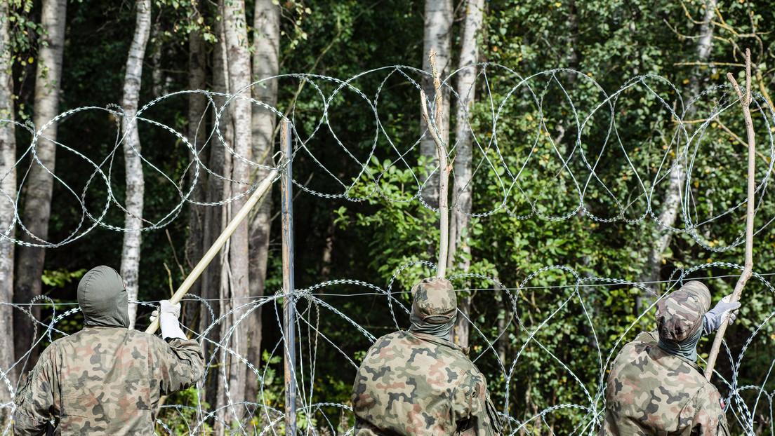 Amnesty International kritisiert Polen: Illegaler Umgang mit Migranten im Grenzgebiet