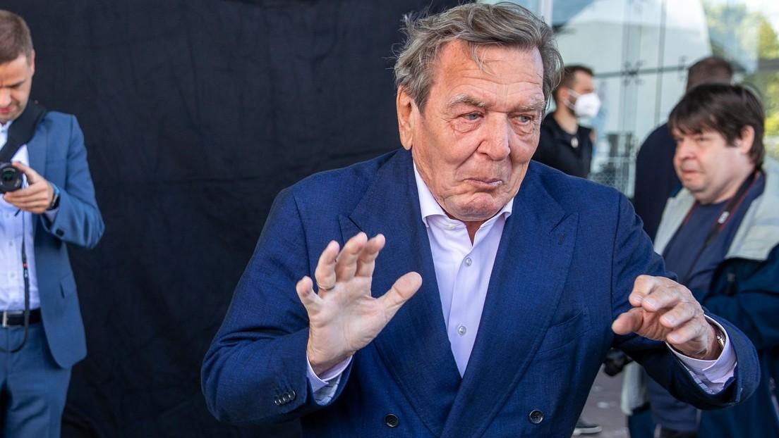 """Altkanzler Schröder für Ampelkoalition – Grüne und FDP seien """"regierungsfähig"""""""