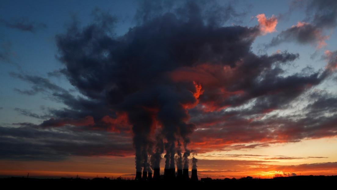 """""""Grünes"""" Biomassekraftwerk verbrennt """"erneuerbares"""" Holz und emittiert mehr CO2 als Kohlekraftwerke"""