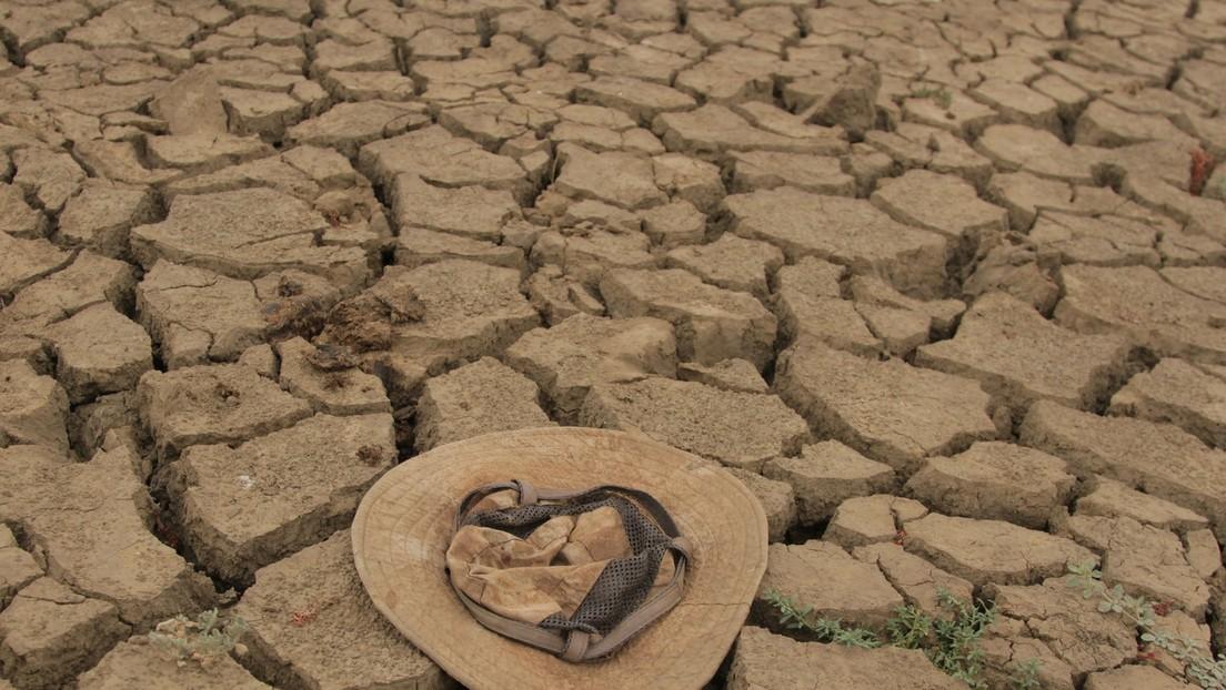 Globaler Hunger steigt drastisch aufgrund von Krieg, Klimawandel und Corona-Maßnahmen