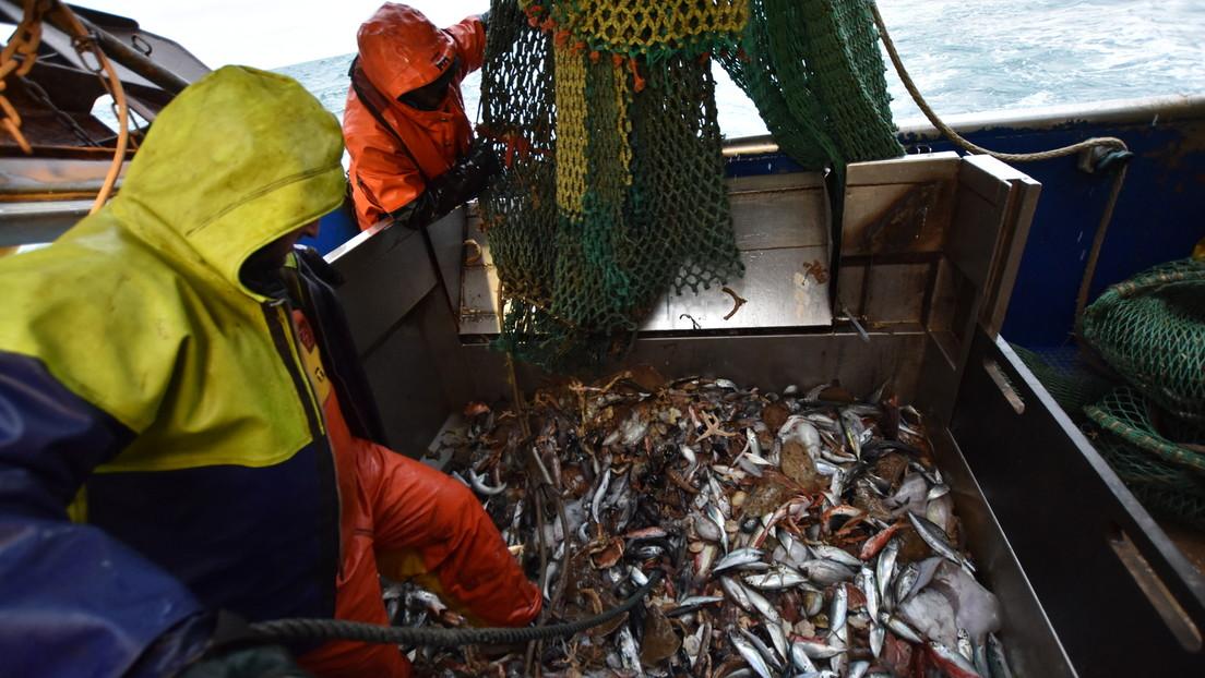 Streit über Fischerei-Lizenzen: Paris droht London erneut mit Sanktionen