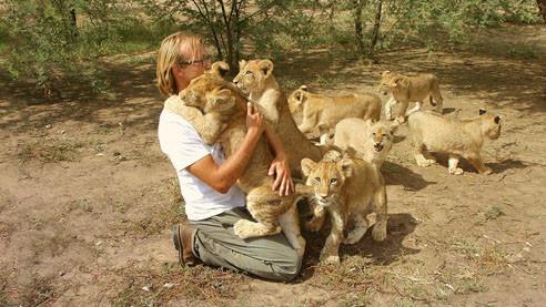 Десять львов Алексея Тихонова