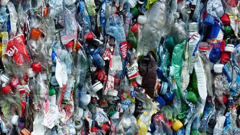 Гормоны в пластике