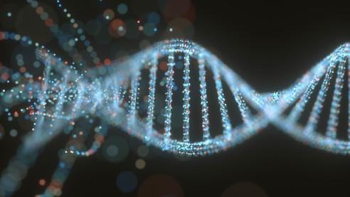 Коварная ДНК