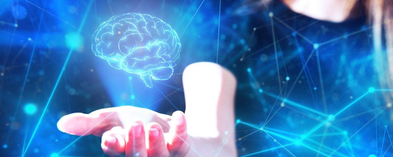 Мозг природы