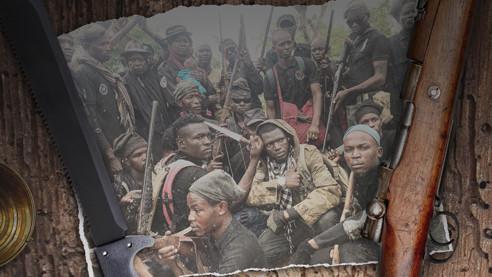 Охотники на «Боко харам»