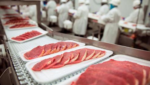 От стволовой клетки до котлеты. Перспективы мяса из пробирки