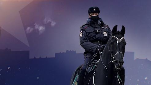 Патрулирование верхом. Как работает конная полиция (Полиция в городе. Серия 7)