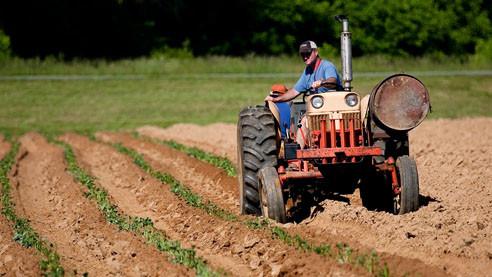 Применение пестицидов. Как человек губит природу и самого себя