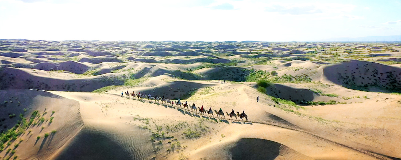 Живая пустыня (ТРЕЙЛЕР)