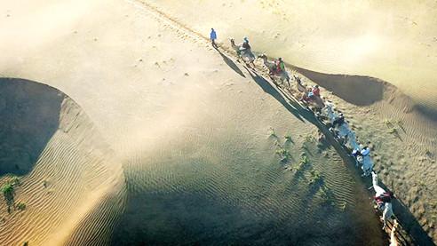 Территория жизни. Как озеленяли пустыню Кузупчи