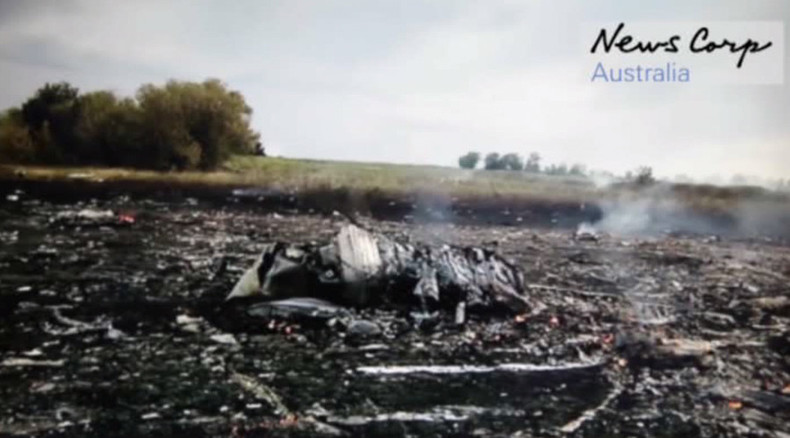 'Was there a 2nd plane?' New footage shows MH17 crash site minutes after Boeing downing