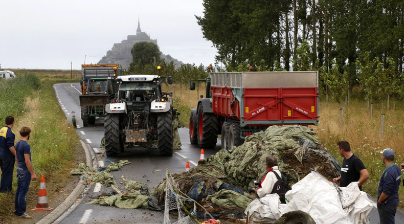 'You're killing us': French farmers dump manure, block roads to protest low meat & milk prices