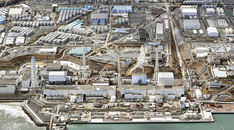 Fukushima nuclear disaster: 'Radiation will wash down from mountains, forests into other lands'