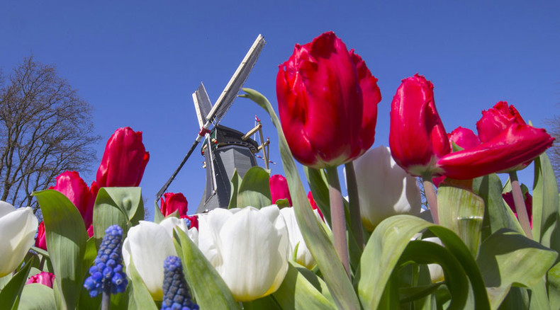 Russia toughens up on Dutch flowers
