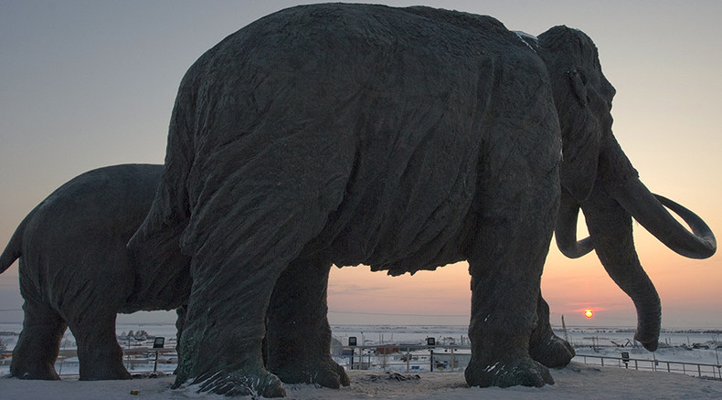 Humans or Climate Change: So who killed mammoths and other biggies?