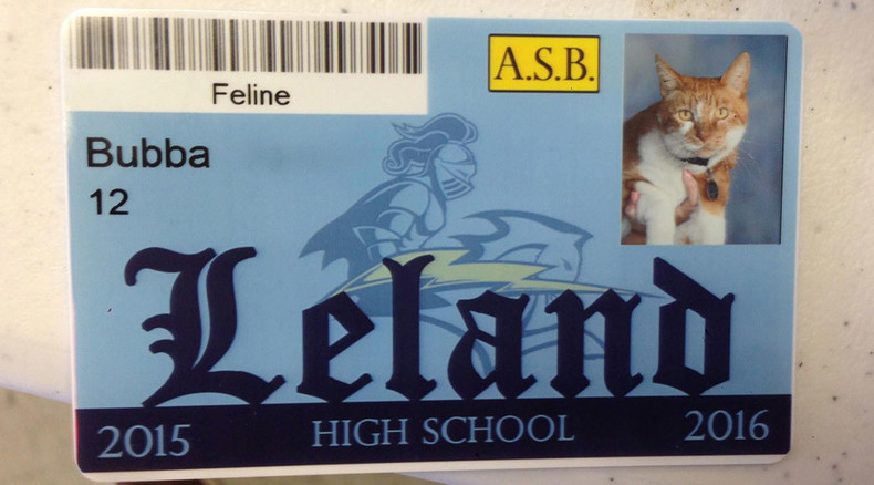 Getting an eduCATion: Feline receives student ID card in California High School