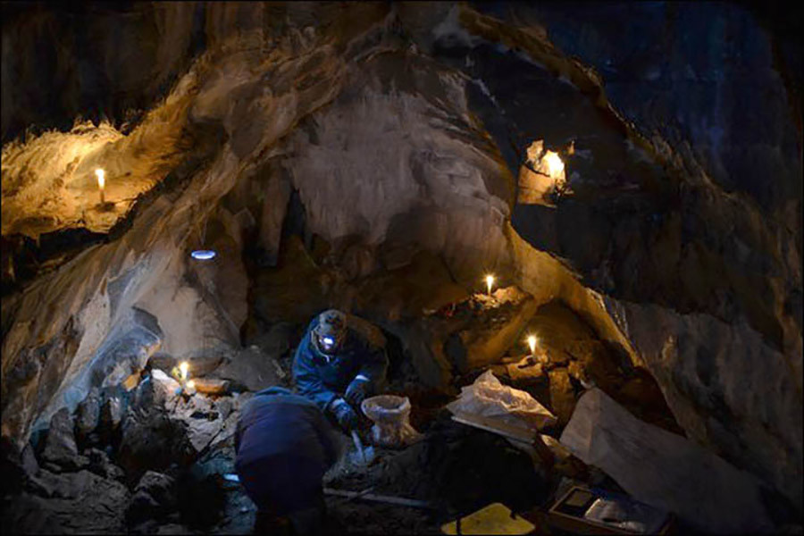 Hoard of ancient lion bones found in Urals cave said to be ...