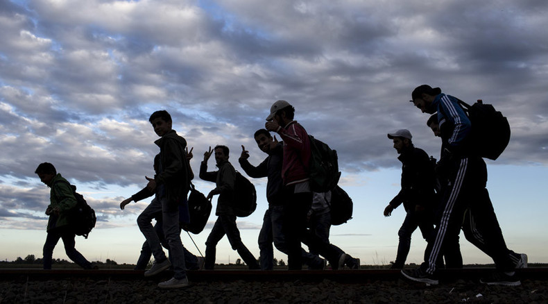 Trains between Denmark and Germany halted amid refugee crisis